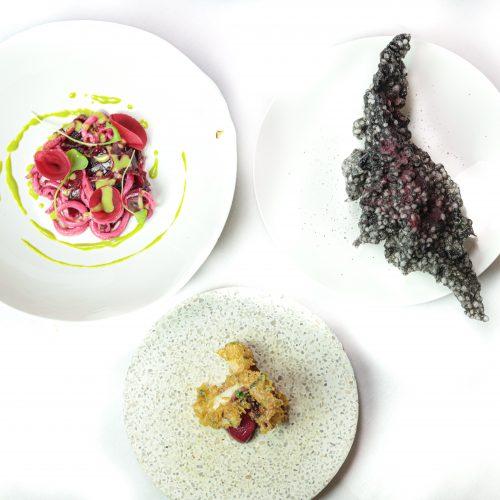 Hotel Restaurant Eclosion - Menu Dégustation en 8 Séquences Accord Mets et Vins