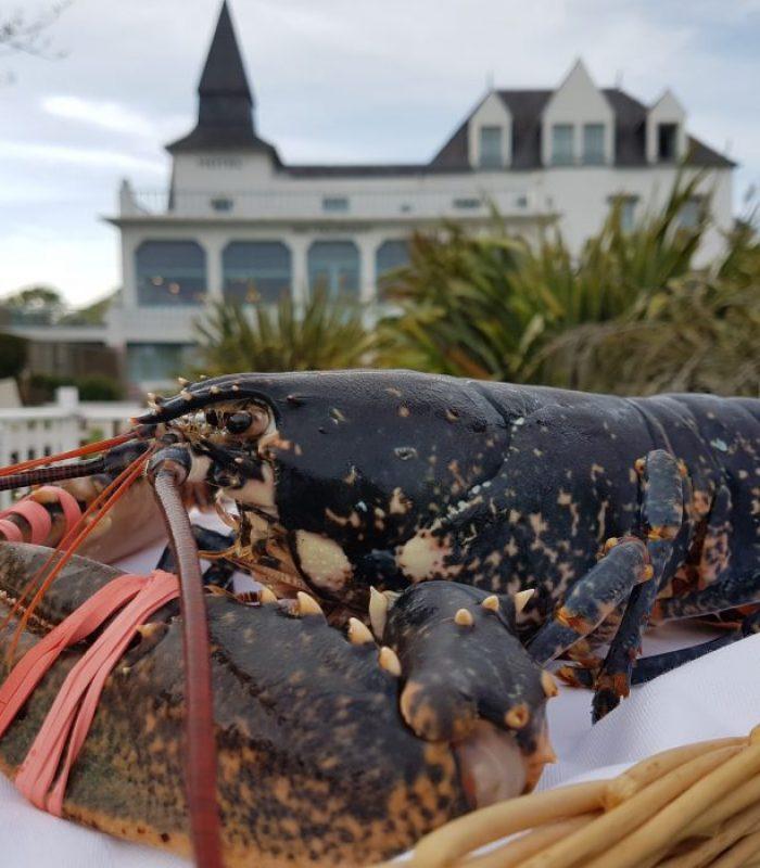 Autour du homard - HOTEL DU TUMULUS