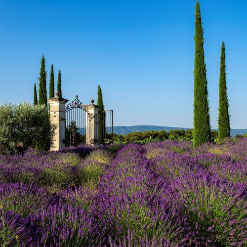 COQUILLADE PROVENCE RESORT & SPA 5* - Relais & Châteaux - Coeur à Coeur en Provence (Printemps / Eté)