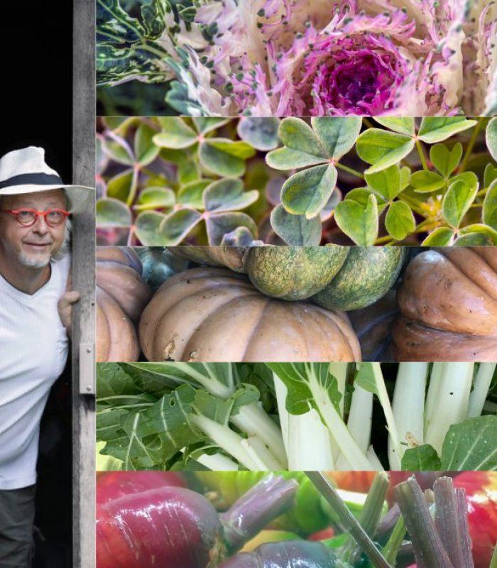 Découverte Jardins & Cuisine - TABLE DU GOURMET